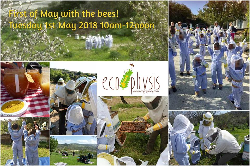 First of May Bee Activities
