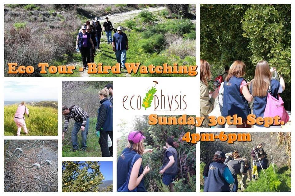 Eco Tour - Bird Watching