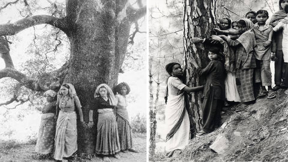 Introduction to Ecofeminism