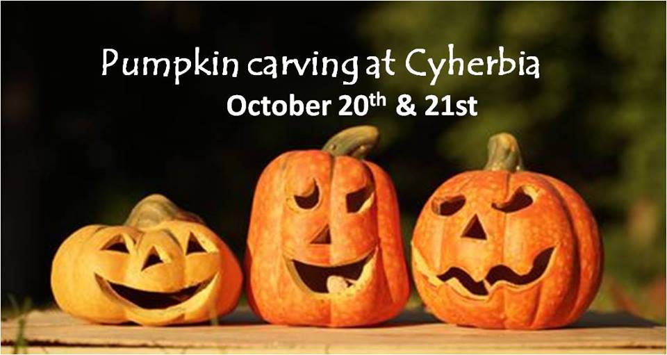 Carve your own pumpkin