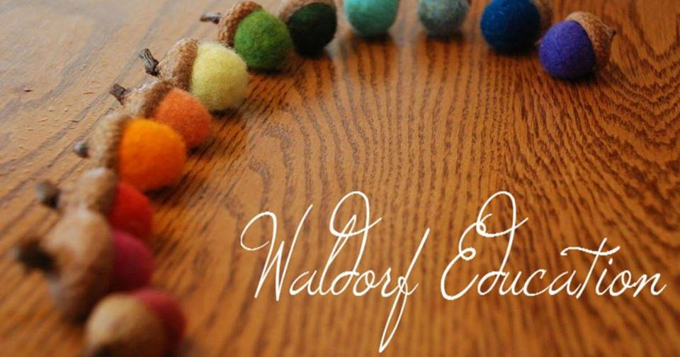 Waldorf Teacher Accreditated Certification