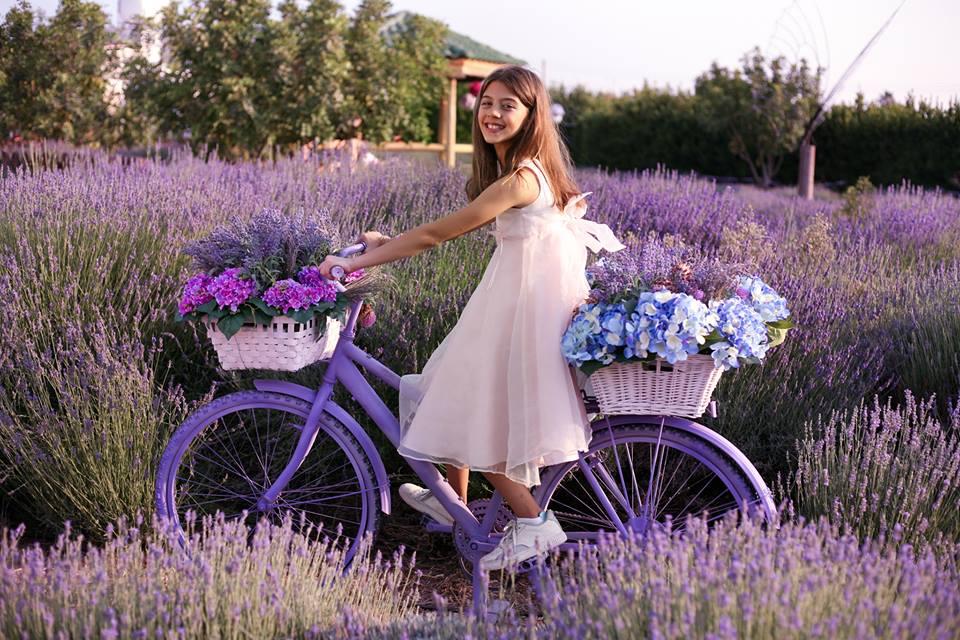CyHerbia Lavender Festival
